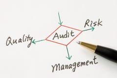 Exécution d'un audit