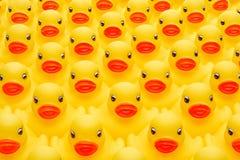 Exército de borracha do pato Imagens de Stock