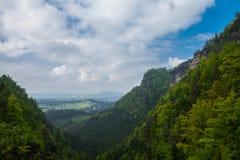 Exaltación de la montaña del bosque Foto de archivo
