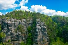 Exaltación de la montaña del bosque Fotografía de archivo