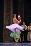 Examen-Clara la plupart de casse-noix de ballet de poupée-Le de goûts Photo libre de droits