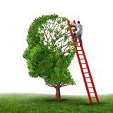 Examen del cerebro Imagen de archivo libre de regalías