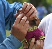 Examen dentaire de vétérinaire Photographie stock libre de droits