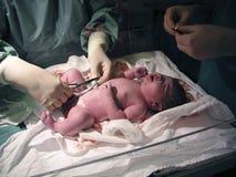 Examinação Recém-nascido-Médica Fotografia de Stock Royalty Free