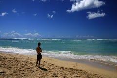 Examinando a praia Fotografia de Stock Royalty Free