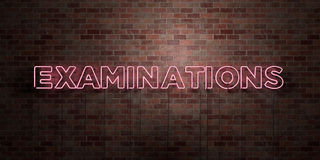 EXAMINATIONS - fluorescent Neon tube Sign on brickwork - Front view - 3D rendered royalty free stock picture Royalty Free Stock Photos