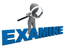 Examine Character Shows Examination Royalty Free Stock Image