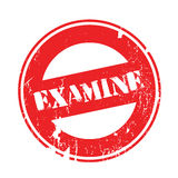 Examine rubber stamp Stock Image