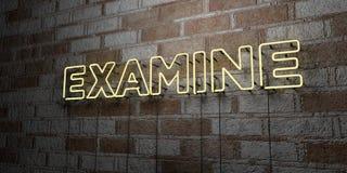 EXAMINE - Señal de neón que brilla intensamente en la pared de la cantería - 3D rindió el ejemplo común libre de los derechos ilustración del vector