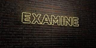EXAMINE - sinal de néon realístico no fundo da parede de tijolo - a imagem conservada em estoque livre rendida 3D dos direitos ilustração royalty free