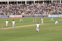 Examinez les joueurs d'allumette de cricket Photo libre de droits