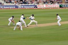 Examinez les joueurs d'allumette de cricket Photographie stock