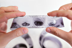 Examining images on film strip Royalty Free Stock Photography