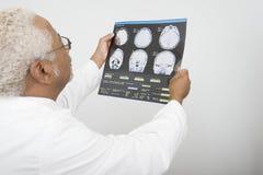 Examining X-Ray Report In医生诊所 免版税库存图片