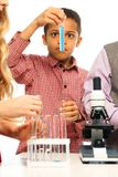 Examining test tube Stock Image