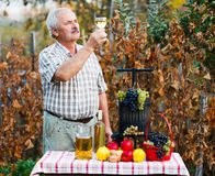 Examining of wine by man Stock Photos
