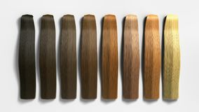 Example of different hair colors 3d render on white Royalty Free Stock Photography