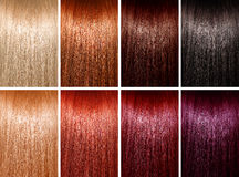 Example of hair colors Royalty Free Stock Images
