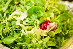 Macro shot of green salad Royalty Free Stock Photo