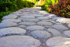 Lined with round stones, a path among flowers and plants in the garden. royalty free stock image