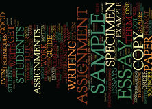 Example Of A Term Paper Text Background  Word Cloud Concept Stock Photo