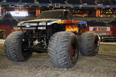 Excaliber Monster Jam Truck. Driven by David Brown in Toronto Ontario 2011 Stock Image