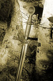 Excalibur sword in forest Stock Photo