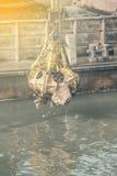Excavador en la gabarra con el gancho agarrador hidráulico 2 de la piedra del rotor Fotos de archivo