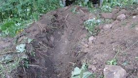 Excavador que cava un foso profundo almacen de video