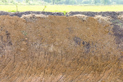 Excavated paddy fields Royalty Free Stock Photography