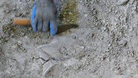 Excavation of antiquities stock video