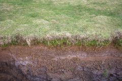 Excavation. Frontal view of a earth excavation with grass Royalty Free Stock Image