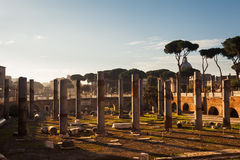 Excavation Site in Rome Stock Photo