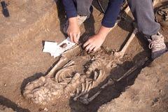 Excavations archéologiques L'archéologue dans un processus défonceur, recherchant la tombe, les os humains, la pièce du squelette image stock