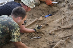 Excavations of burial of soldiers of the Second World War.  Royalty Free Stock Photo