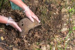 Digging in the forest. The German helmet M35. Imitation. WW2 recovery. Russia. stock photos