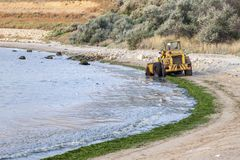 Excavator clean algae collected from the shore Royalty Free Stock Photos