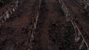 Excavator clears debris