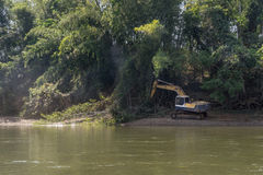 Excavator cutting down bamboo forest near river Royalty Free Stock Photos
