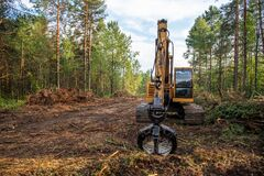 Excavator Grapple during clearing forest for new development. Tracked Backhoe with forest clamp for forestry work. Tracked timber