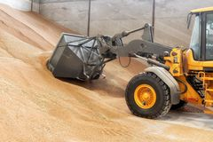 Excavator loader bucket loading grain, close up. Big heap of grain in a warehouse at food factory.