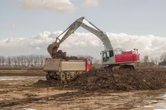 Excavator loads truck with soil. For transporting Royalty Free Stock Images