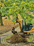 Excavator in park Royalty Free Stock Images