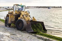 Excavator to clean algae on the beach Royalty Free Stock Images
