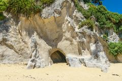 Excave en una playa, parque nacional del tasman de Abel, Nueva Zelanda 1 fotos de archivo