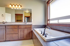 Excellent bathroom with brown hints. Stock Image