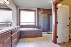 Excellent bathroom with brown hints. Royalty Free Stock Photos