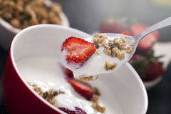 Excellent breakfast. Breakfast cereal with yoghurt and strawberr Stock Images