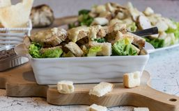 Excellent caesar salad with roasted pastry and chicken, sprinkled with parmesan cheese Royalty Free Stock Images