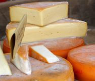 Excellent cheese on sale from milkman Royalty Free Stock Photography